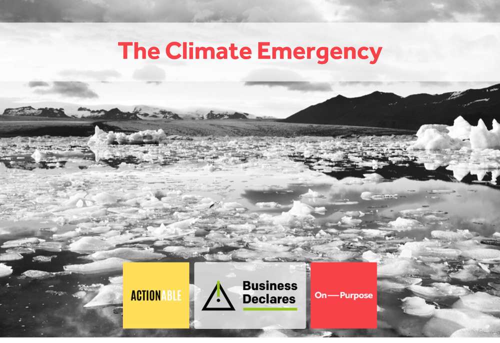 The Climate Emergency in the time of a pandemic_ What you can do about it